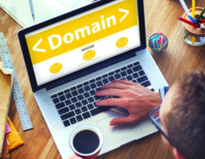 what is domain in hindi