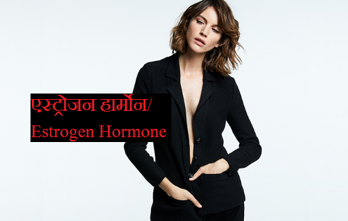role-meaning-of-estrogen-harmone-in-women-in-hindi